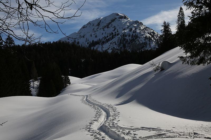 Feldenkrais - Schneeschuhwandern Großes Walsertal
